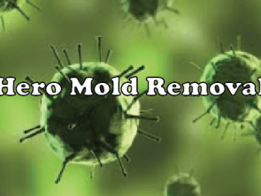 Hero Mold Removal – VA Beach