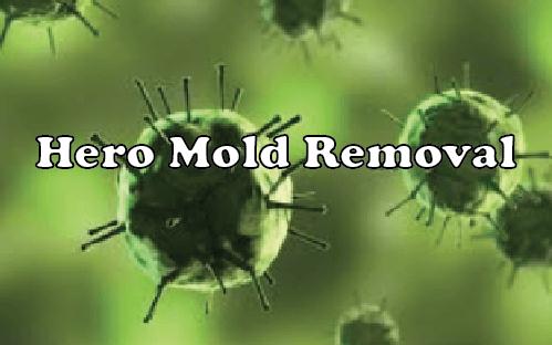 Hero Mold Removal – VA Beach